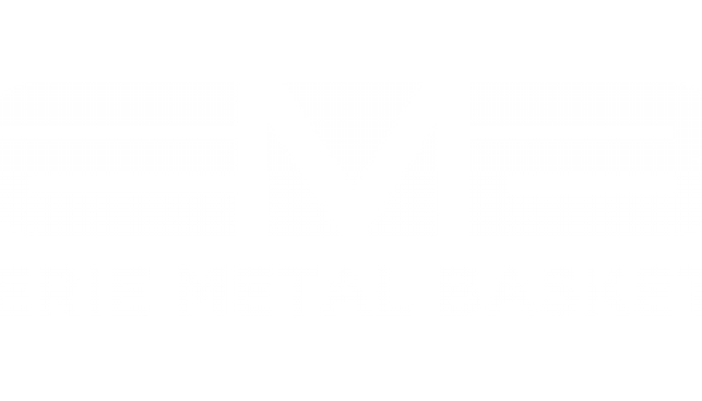 logo-example
